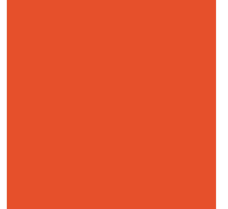 audit_report_icon