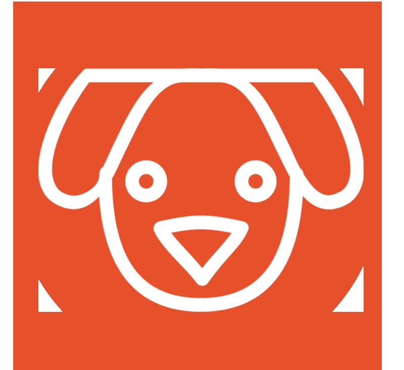 dog_license